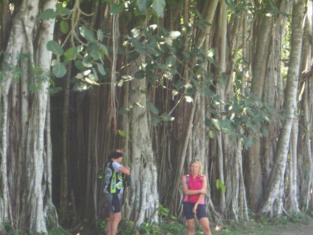 Kuba2008
